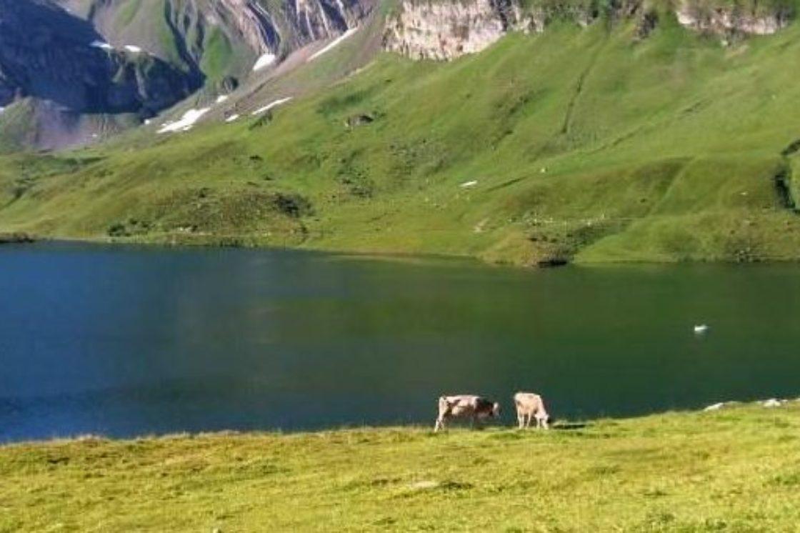 4-Seen Wanderung Melchsee-Frutt > Jochpass